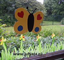 Vlinder op het raam