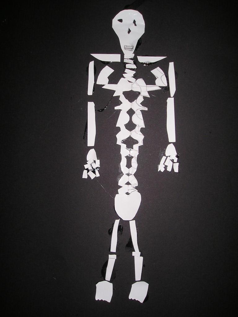 hoofd van skelet tekenen