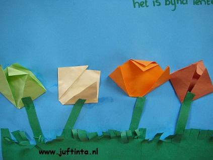 gevouwen tulpen